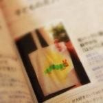 福岡市南区・那珂川・春日・大野城のベビーマッサージ教室